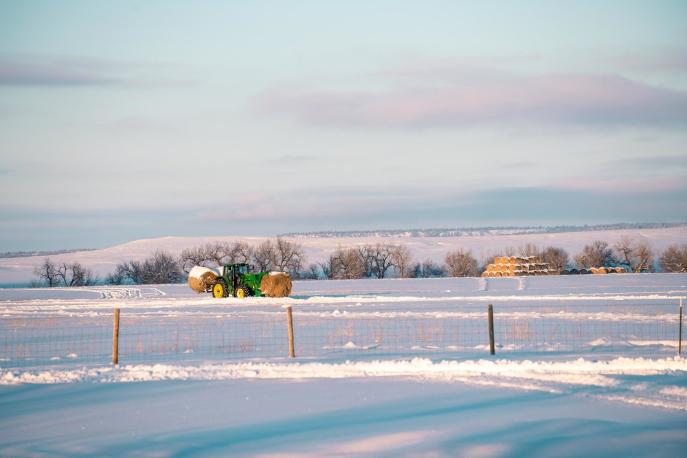 The tractor coming in during sunset in eastern Montana.