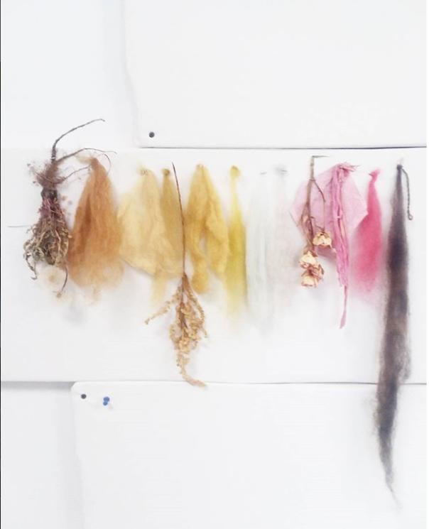wool color samples