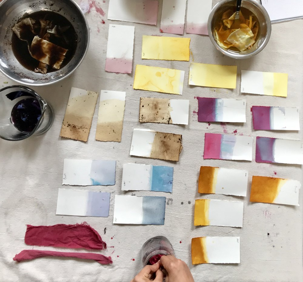 - This workshop is a study of botanical color and shape; a more technical approach covering the basics of natural dyeing. We will break down recipes to make fibers colorfast, create our own color concoction, collect swatches for each dye bath, move through an observational drawing session, extract color from local plant matter, and cover each native dye's medicinal uses. You will leave with a notebook documenting nature's colors, detailed recipes, and beautiful illustrations! No experience is needed in order to attend.Colors will come from flowers, fungi, food waste, and other plant and earth based materials. We support thoughtful foraging and community gardens.* Please bring your own notebook to fill *All supplies are included in workshop fee EXCEPT a notebook.* One hour lunch break *Hosted by Echoview Fiber Mill and taught by Coco Villa.