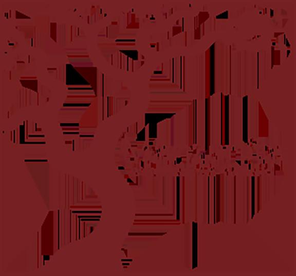 manzanita.png