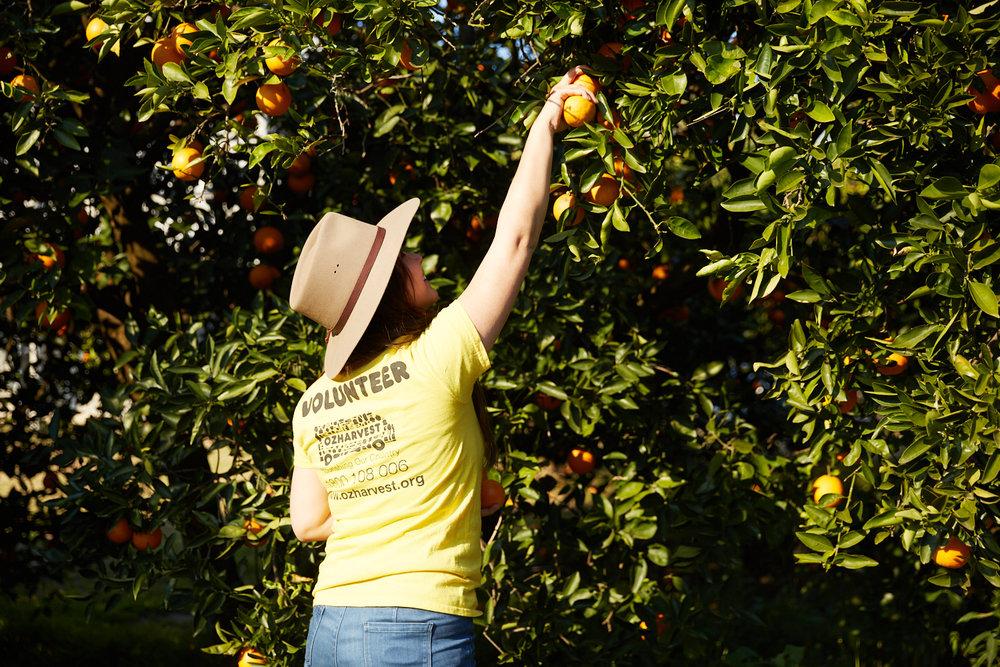 Juice For Good vending machine orange volunteer