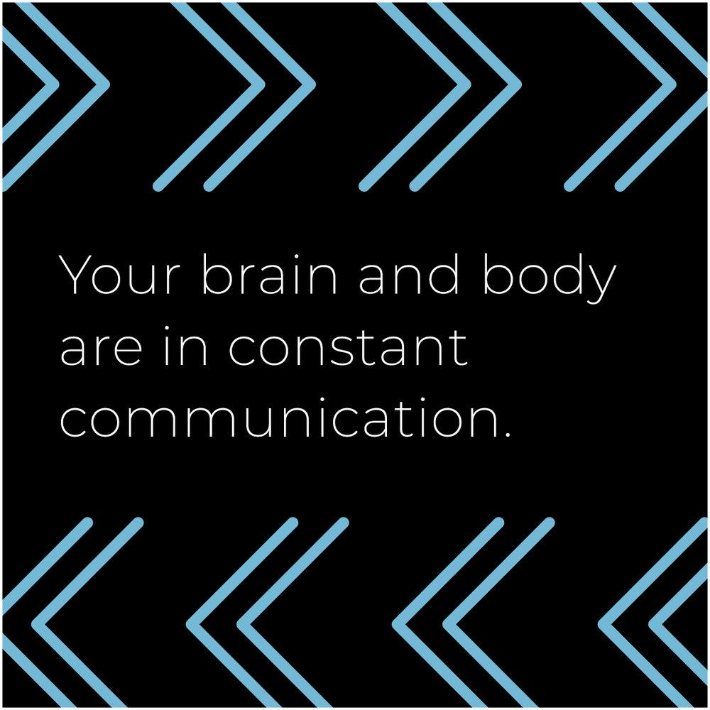 brainbody.jpg