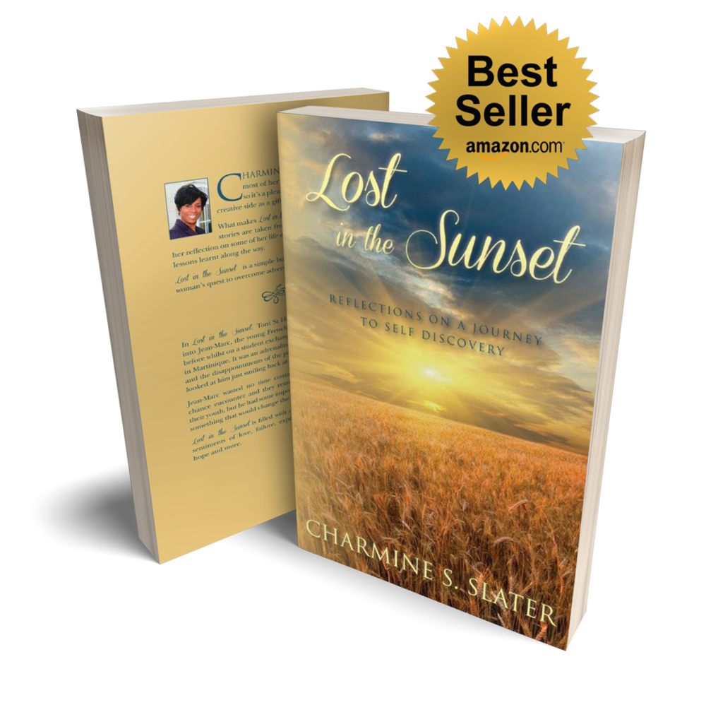 Lost in the Sunset, by Charmine S Slater