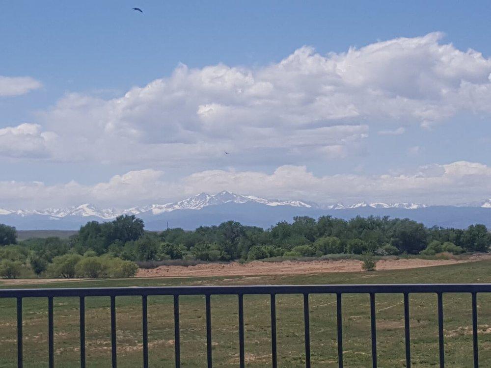 skydeck view.jpg
