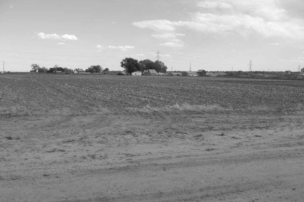47_Farmland_SField.JPG