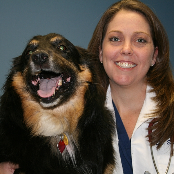 Dr. Erin Shults - Our founder and CEO Dr. Erin Shults quit private practice to devote all of her time and expertise to Mazie's Mission. She graduated from Texas A&M Veterinary School in 1998. She founded Mazie's Mission in the fall of 2009 with one goal in mind-become a driving force in animal welfare. Dr. Shults believes that every animal deserves to be treated with kindness and live without fear. She is also training in the field of Veterinary Forensics to aid prosecutors and law enforcement in animal neglect, cruelty, and dog fighting cases. Dr Shults is a member of AVMA, TVMA, and serves as an Advisory Board Member of Texas Humane Legislation Network.