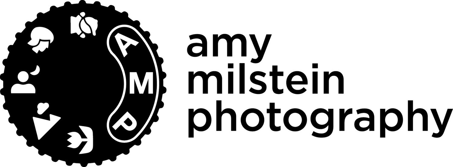 Amy Milstein Photography
