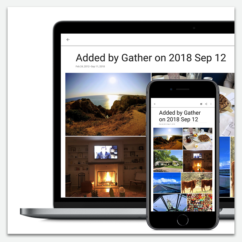 gather album in google photos