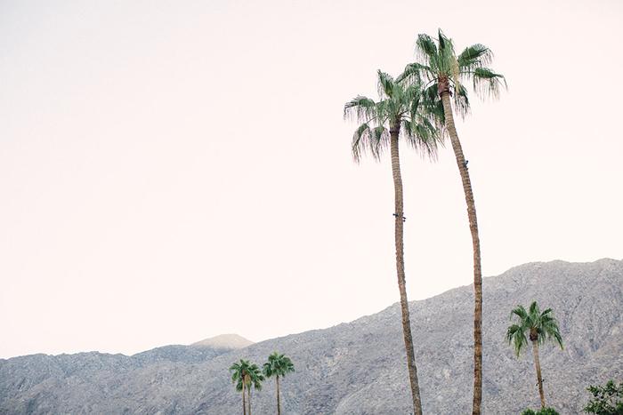 Palm Springs wedding scenery