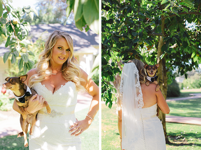 Sweet photo of the bride with her pup!