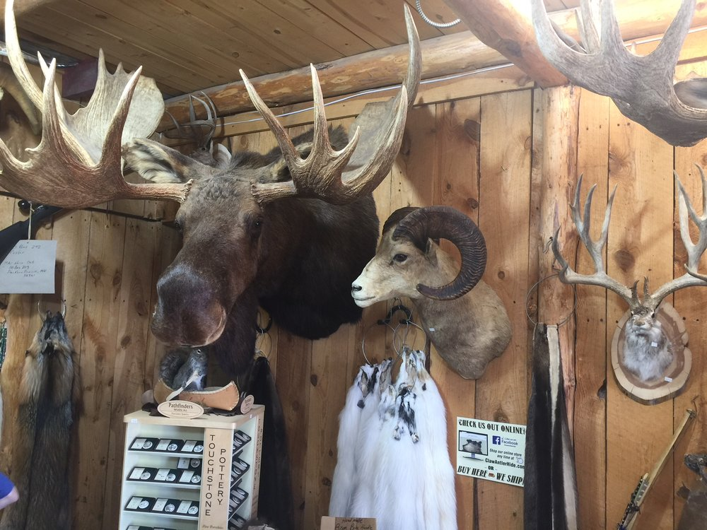 Claw, Antler & Hide Company in Custer, South Dakota