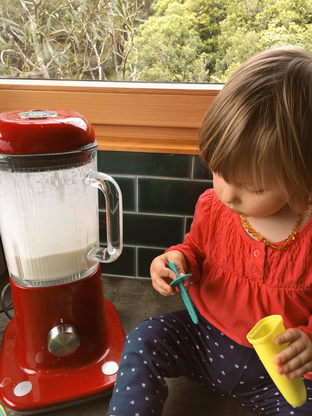 vegan, sugar free ice blocks. toddler food ideas