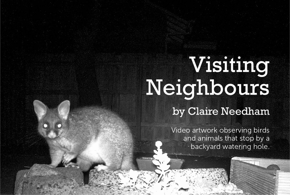ClaireNeedham_VisitingNeighbours_video_2017 - Claire Needham.jpg