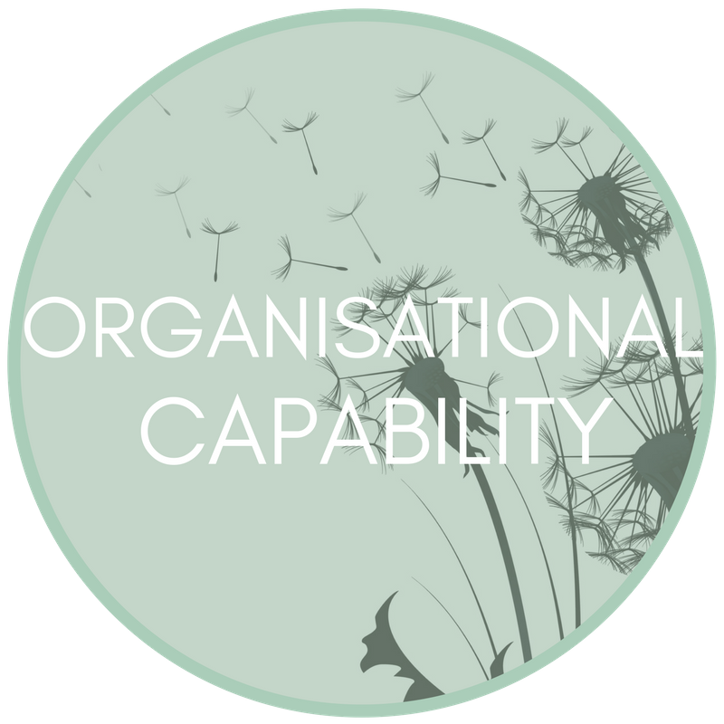 organisational-capability.png