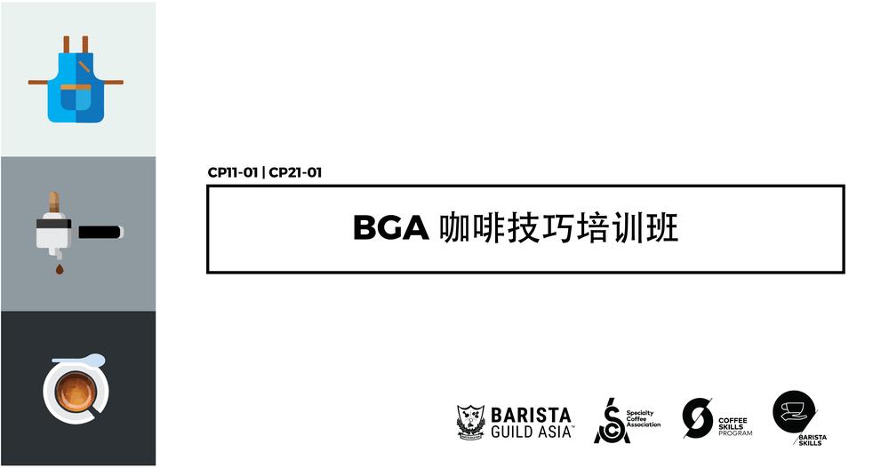 BGA CSP-Mandarin.png