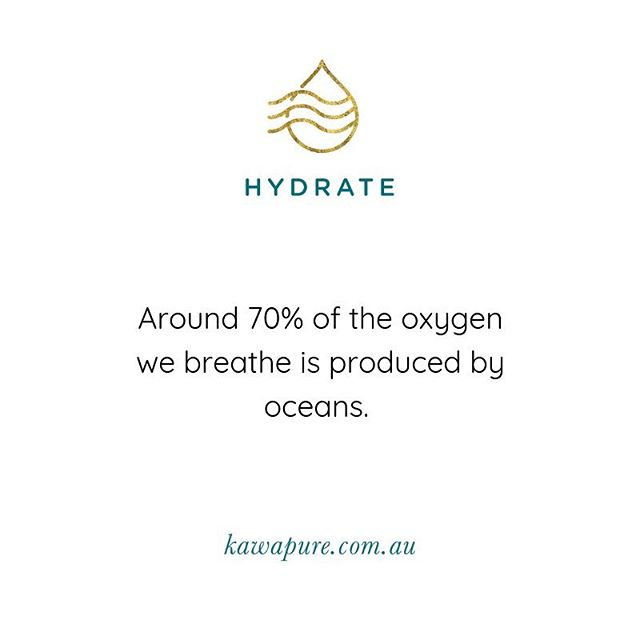 Most of the earths oxygen comes from tiny ocean plants called phytoplankton, that live near the waters surface and drift with the current. There is oxygen from ocean plants in every breath we take! 🌊 #motherearth