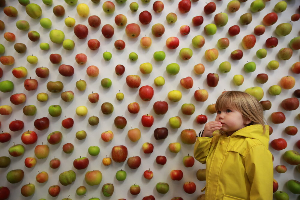 Apples 243.JPG