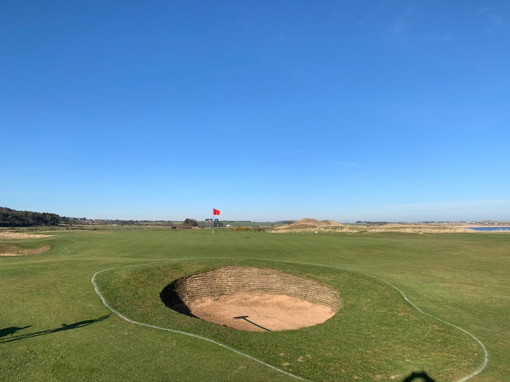 The new Bunkers on 14 have all received a cut this week and have settled in extremely well.