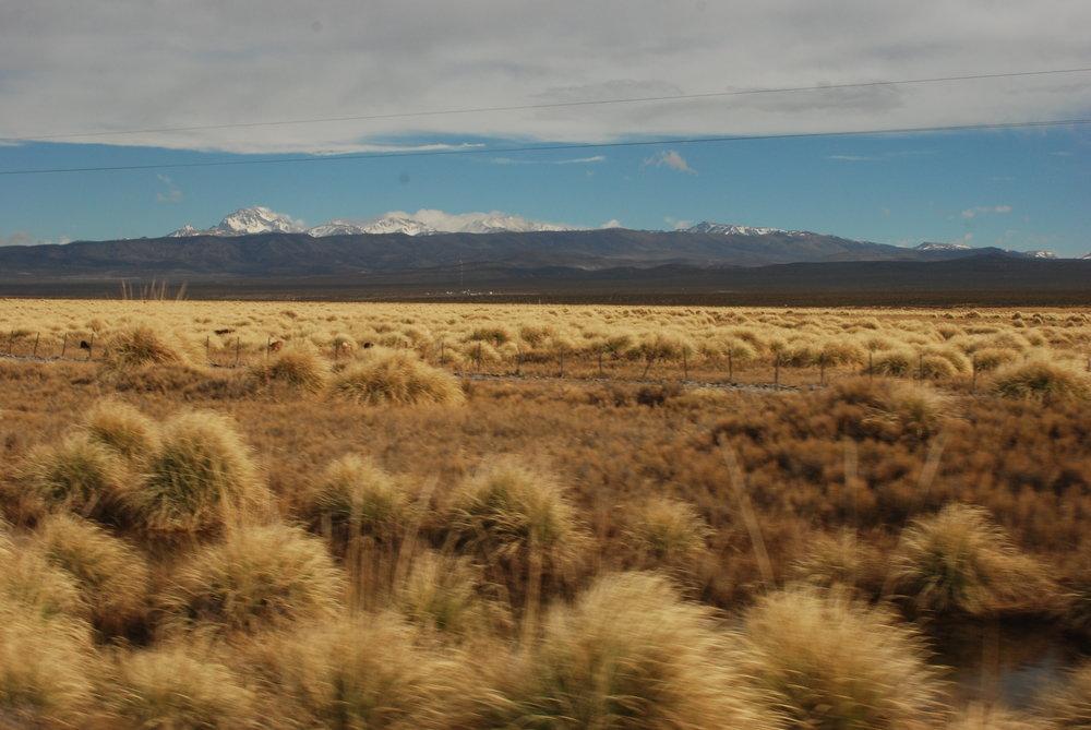 Patagonia 1.JPG