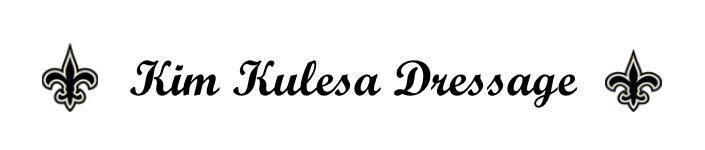 Kulesa logo.png