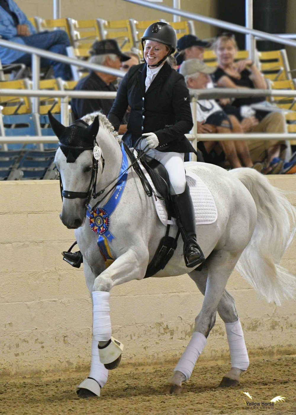 Despite being a relative newcomer to dressage, Alana Andrews and her Lusitano gelding Caju won the Great American Insurance Group/USDF Region 7 Adult Amateur Third Level Championship at the 2018 CDS Championship Show. Photo: Jennifer M. Keeler/Yellow Horse Marketing.