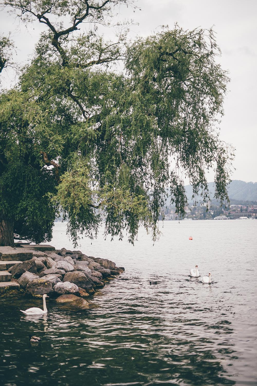 Zurich_city_00.jpg