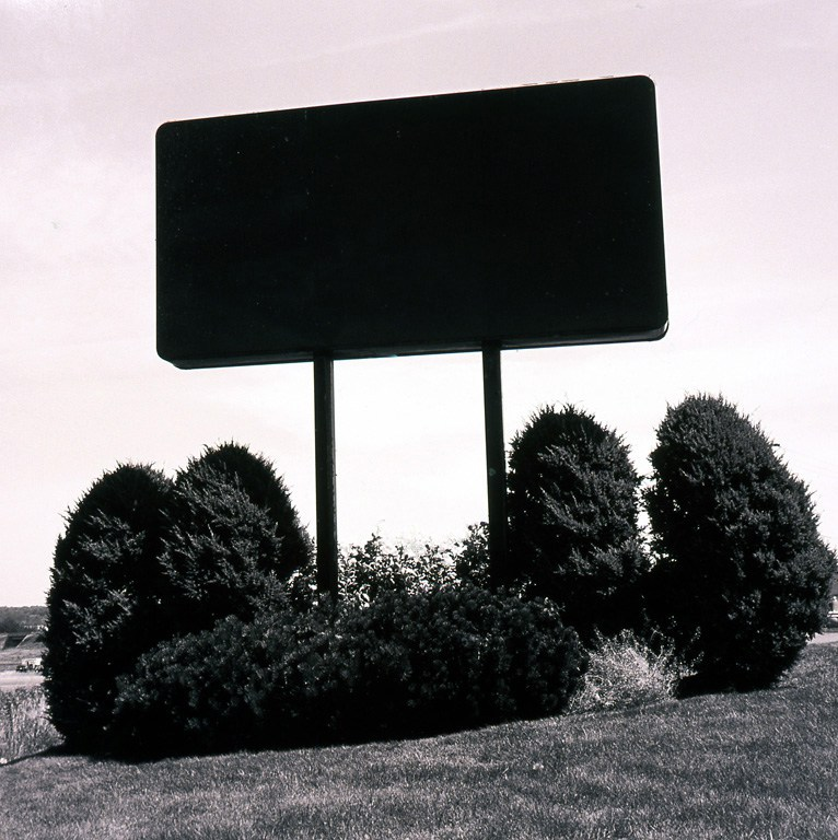 07-black-and-cedars1.jpg