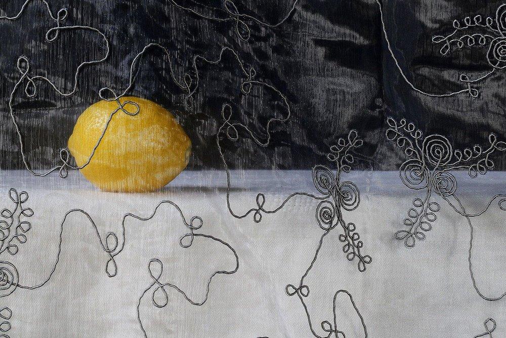 Saskia Boelsom,  Lemon,  2013, C-type photograph