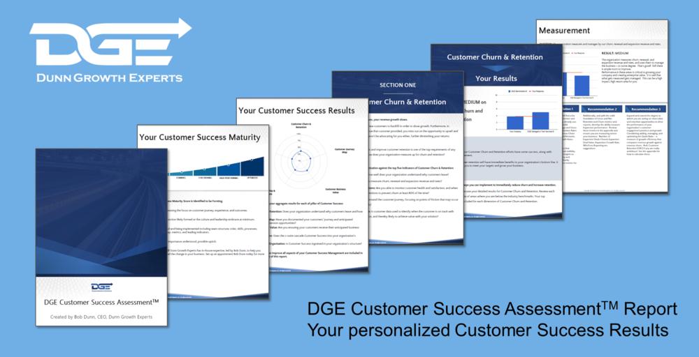 DGE CS Assessment Report Sample.png
