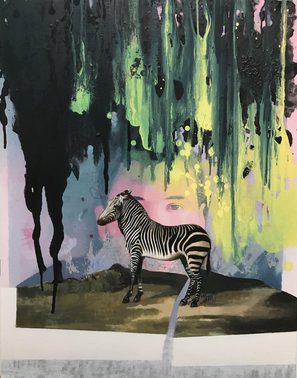 Everest Hall- Zebra- 22x28- 2016.jpg