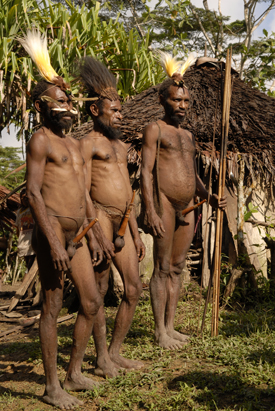 Tohamak Mek Elders