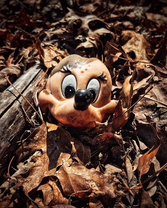 Toy graveyard in Kentucky forest. #toys #forest #sad #smile #iphoneonly #snapseed