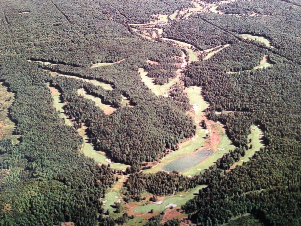 black forest aerial.jpg
