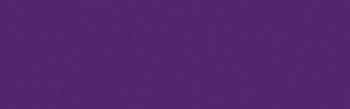613 Purple