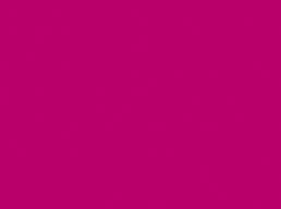 040 Fuchsia*