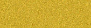 304 Solar Gold