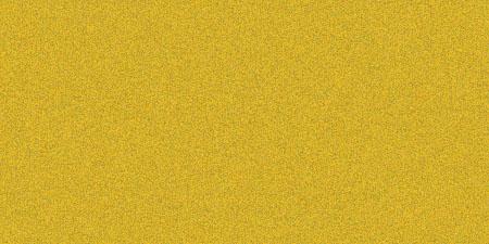204 Warm Gold