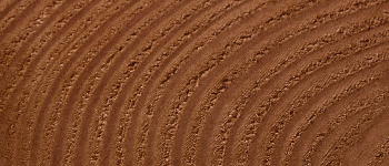 023 Brown