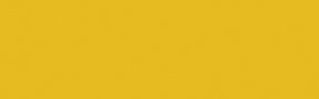 447 Yellow