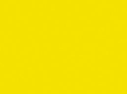 004 Lemon Yellow