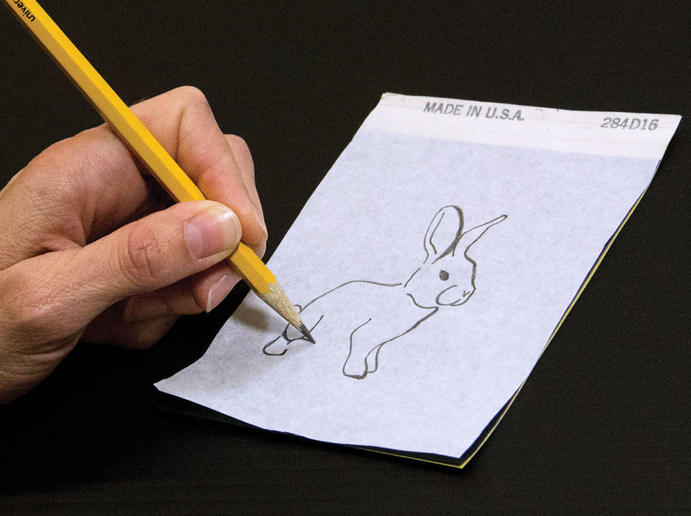 Bunny-Step-1-Draw-on-Paper.jpg