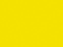 004 Lemon Yellow