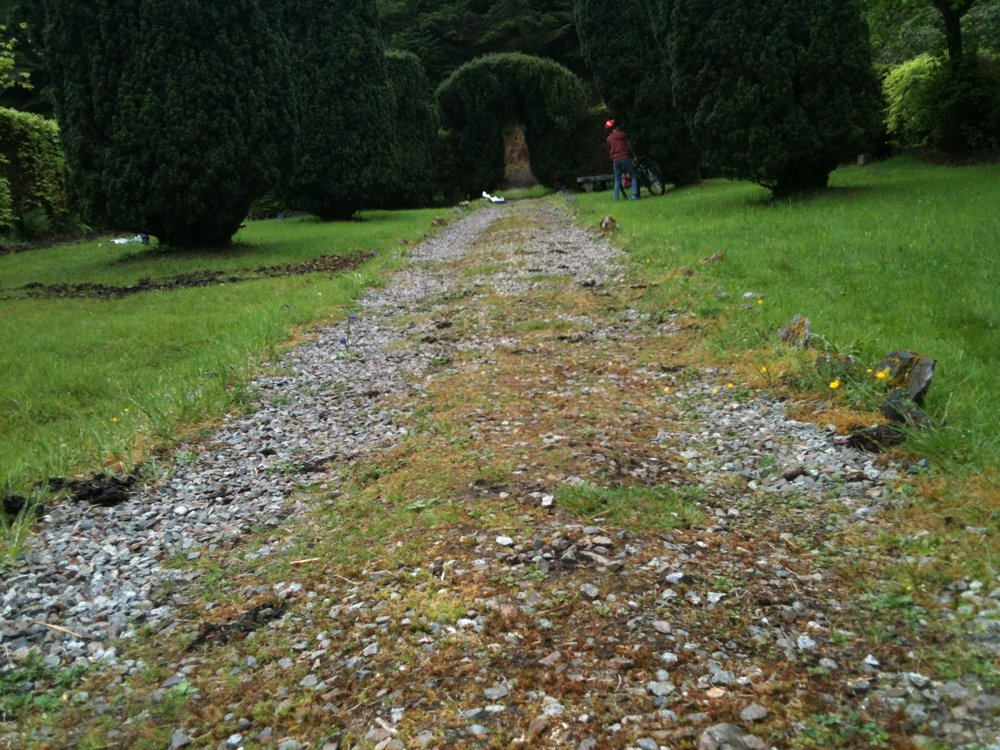 Central path before restoration