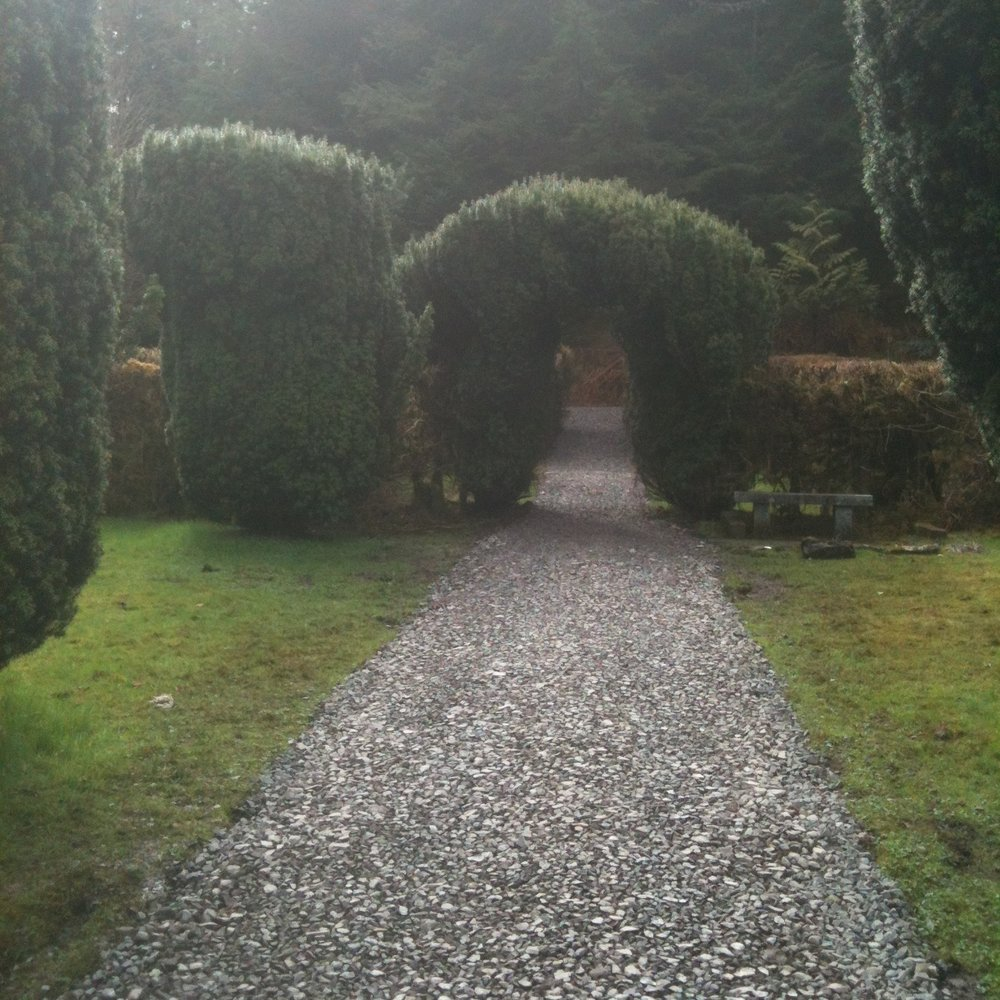 Paths after restoration