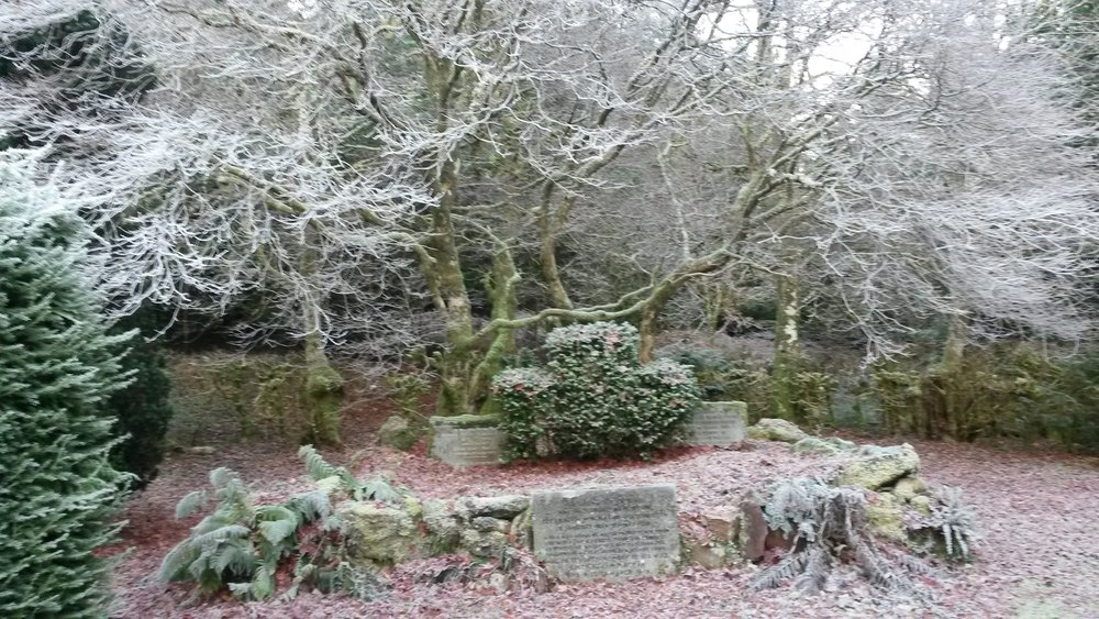 Altar in frost (E Jamieson).jpg