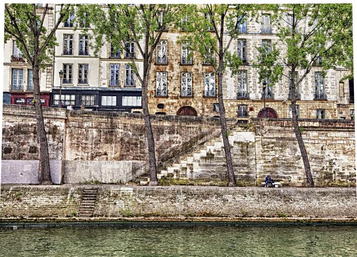 Trees on Seine.jpg