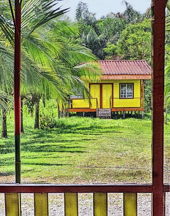 Yellow_HDRColorEfexShFinale.jpg