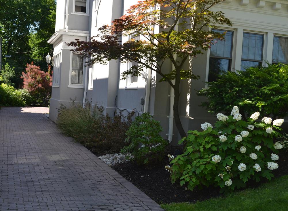 landscape-design-by-jay-mckinnon-mckinnon-gardens-landscape-design.jpg