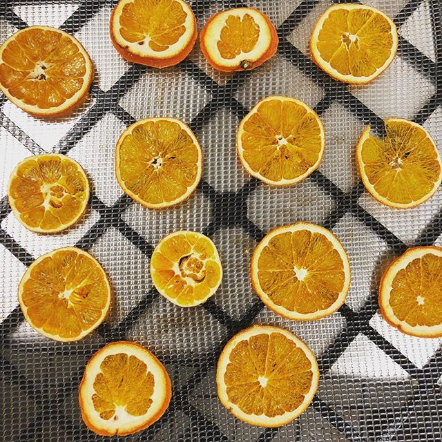 Orange you glad we're back? Squeezing up the freshest concoctions daily 🍊 . . . #fresh #cocktails #alcohol #fruit #delicious #yum #omnomnom #ig #instagood #instafood #nycbar #nycdrinks #nyc #thewoodlot