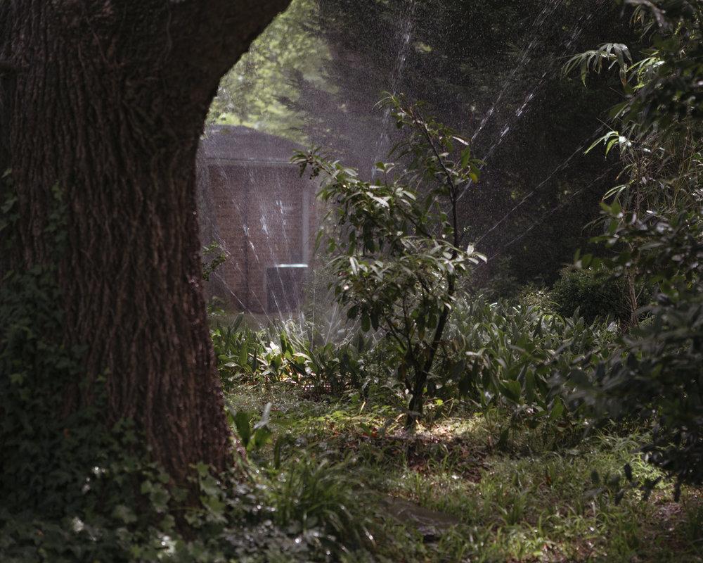 ForestOfLorien_HollinHills_CarolineSpace_Caroline-Space_028.jpg